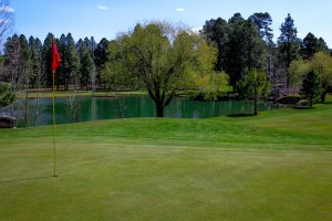 Pinetop Lakes Golf Course - Hole 8, looking back toward the lake